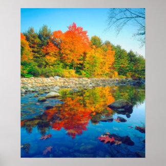 El otoño colorea el reflejo en una corriente en póster