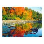 El otoño colorea el reflejo en una corriente en tarjeta postal