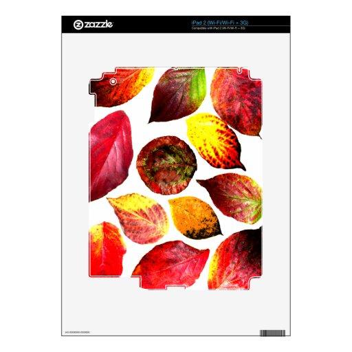 El otoño colorea la exhibición de la hoja skin para el iPad 2