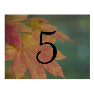 El otoño colorea número de la tabla del boda postal