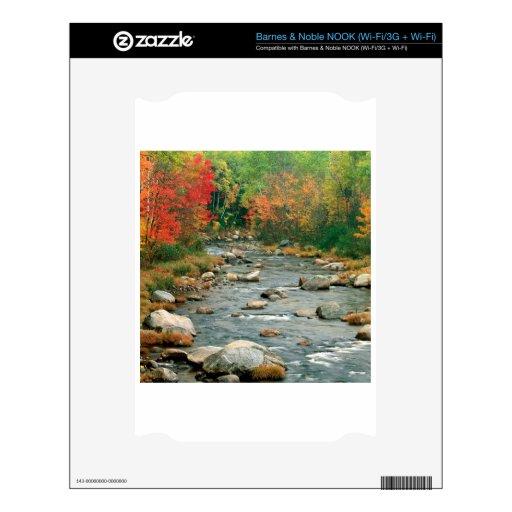 El otoño del agua colorea Hampshire Calcomanía Para NOOK