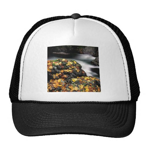 El otoño del agua cubrió el río de los alces de la gorros bordados