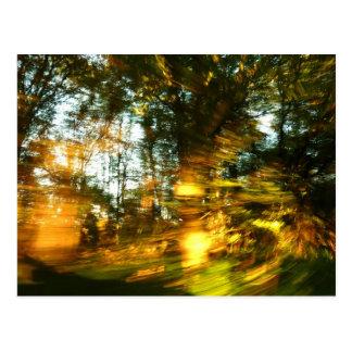 ¡El otoño deslumbra! Postales