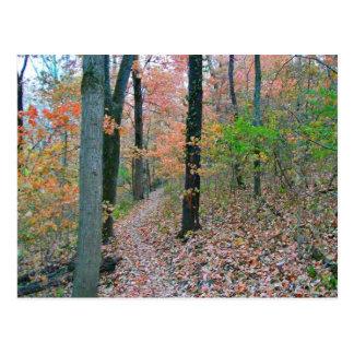 El otoño fue significado para caminar tarjeta postal