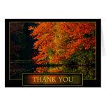 El otoño le agradece reconocimiento felicitación