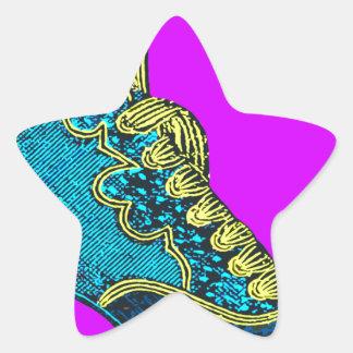 el otro zapato pegatina en forma de estrella