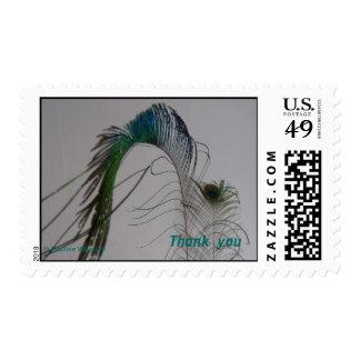 El © P Wherrell le agradece los sellos de la pluma