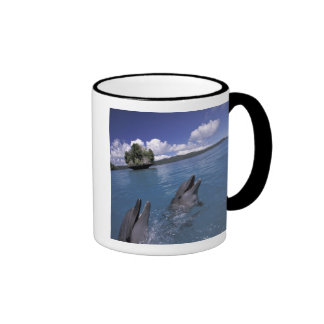 El Pacífico Micronesia Palau Bottlenose Tazas De Café