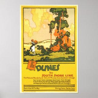 El país de las maravillas de las dunas de la natur póster