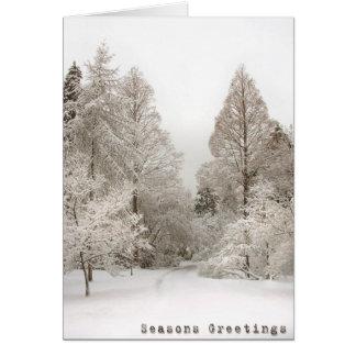 El país de las maravillas del invierno carda tarjeta de felicitación