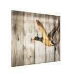 El país rústico del barnwood del vintage ducks la  impresiones en lona