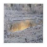El paisaje del invierno del blanco nevado con la l tejas  cerámicas