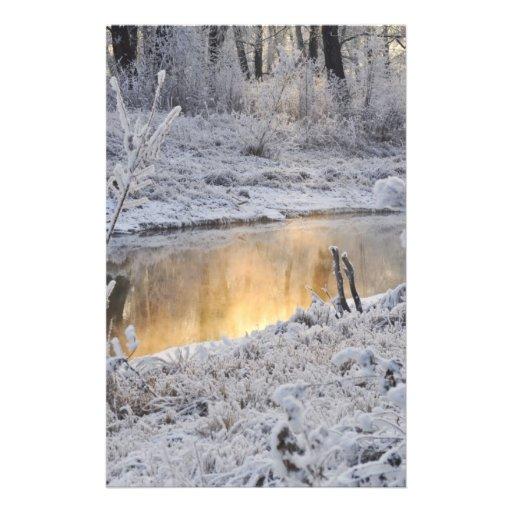 """El paisaje del invierno del blanco nevado con la l folleto 5.5"""" x 8.5"""""""