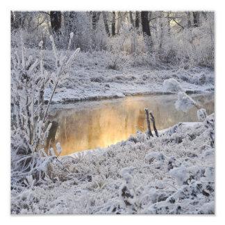 El paisaje del invierno del blanco nevado con la l fotografías