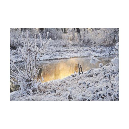 El paisaje del invierno del blanco nevado con la l lona envuelta para galerías