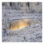 El paisaje del invierno del blanco nevado con la l impresiones fotograficas