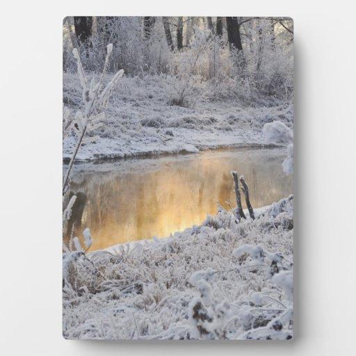 El paisaje del invierno del blanco nevado con la l placa para mostrar
