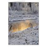 El paisaje del invierno del blanco nevado con la l felicitación
