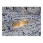 El paisaje del invierno del blanco nevado con la postal