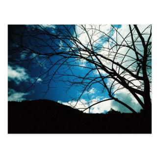 el paisaje natural postales