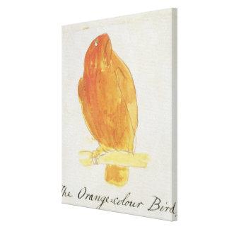 El pájaro anaranjado del color, de 'dieciséis dibu impresión en lienzo estirada