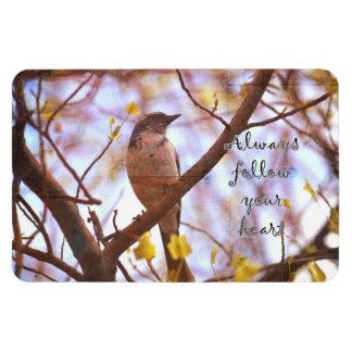 El pájaro azul sigue su corazón imán foto rectangular
