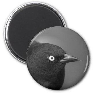 El pájaro de Hitchcock Imán Redondo 5 Cm