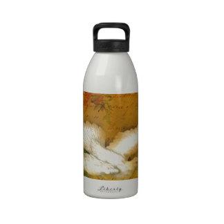 El pájaro de la canción trae paz botellas de agua reutilizables
