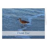 El pájaro de la playa le agradece las notas tarjeta