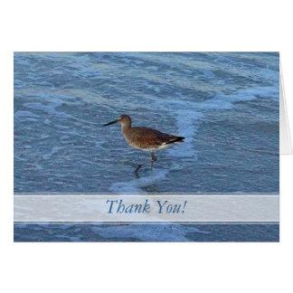 El pájaro de la playa le agradece las notas tarjeta pequeña