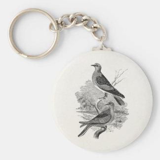 El pájaro de las palomas de la tortuga del vintage llavero redondo tipo pin