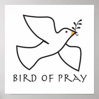 El pájaro de ruega posters