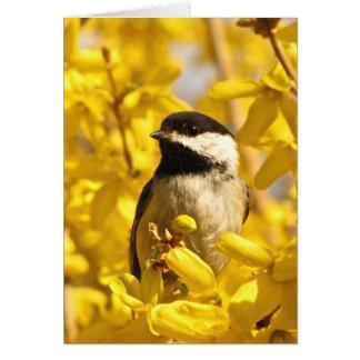 El pájaro del Chickadee en amarillo florece la Tarjeta De Felicitación