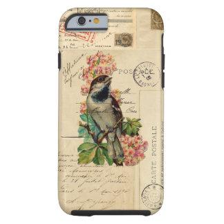 El pájaro del vintage florece la caja francesa de