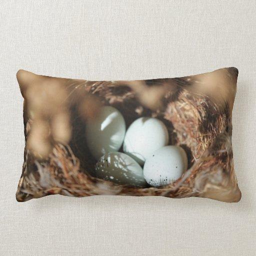 El pájaro Eggs la jerarquía Cojin