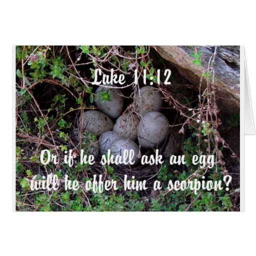 El pájaro Eggs la jerarquía cristiana de la natura Tarjeton