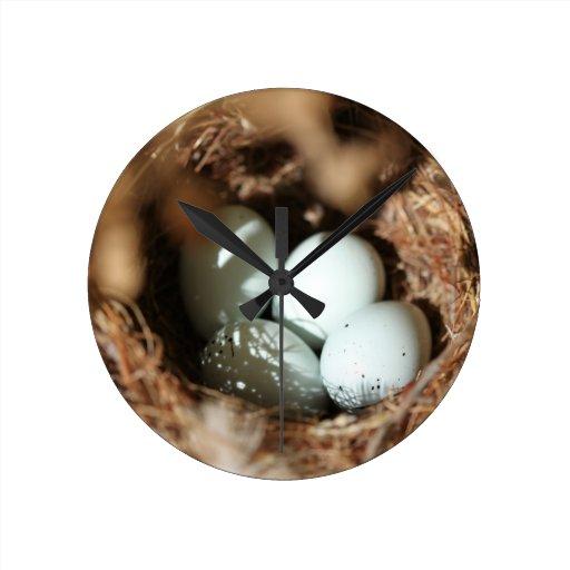El pájaro Eggs la jerarquía Reloj Redondo Mediano