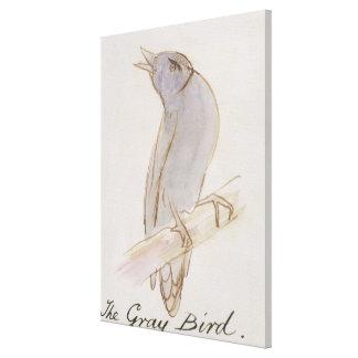 El pájaro gris, de 'dieciséis dibujos de Bir cómic Impresión En Lona