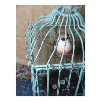 El pájaro lleva a cabo la llave postales