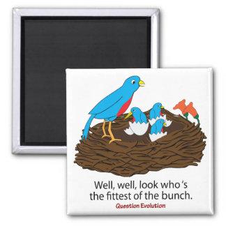 El pájaro más apto imán de nevera