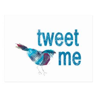 El pájaro más lindo del azul del gorjeo postales
