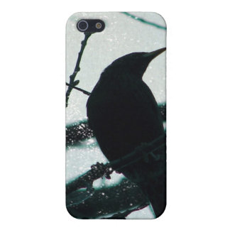 El pájaro que sueños del caso crepuscular del iPho iPhone 5 Funda