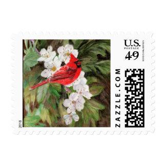 El pájaro rojo en espino florece el sello