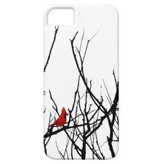 El pájaro rojo por las pimientas de Leslie iPhone 5 Cárcasas