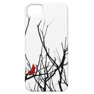 El pájaro rojo por las pimientas de Leslie iPhone 5 Case-Mate Carcasas