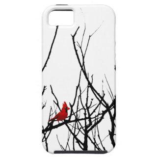 El pájaro rojo por las pimientas de Leslie iPhone 5 Cárcasa
