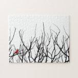 El pájaro rojo por las pimientas de Leslie Rompecabezas Con Fotos