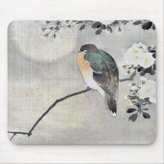 El pájaro se encaramó en una rama de un árbol flor alfombrilla de raton