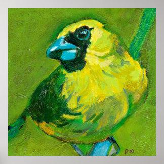 El pájaro verde con el pico azul póster