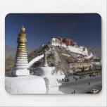 El palacio Potala, Lasa, Tíbet Tapete De Ratones